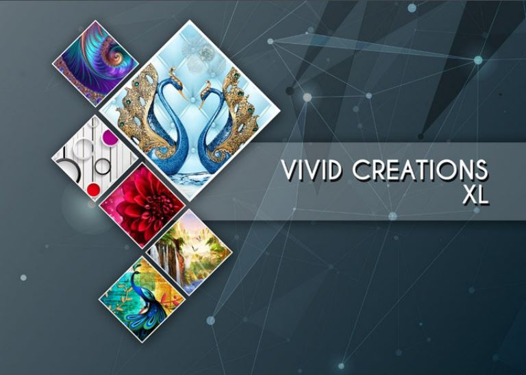 VIVID CREATION XL